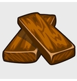 Two brown wooden doard closeup isolated vector image vector image