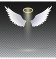 Wings and golden halo vector image vector image