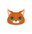 cute red cat head funny cartoon animal character vector image vector image