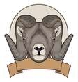 a sheep with horns vector image vector image