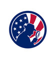 american private investigator usa flag icon vector image vector image