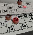 bingo lotto vector image vector image