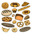 bread and pastry donut belgian waffles and fruit vector image vector image