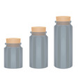 glass bottles with cork vector image vector image