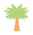 palm tree with leaves and vegetation vector image vector image