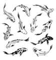 set of koi carps japanese fish korean animals vector image vector image