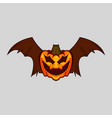 spooky bat halloween pumpkin flying isolated on vector image