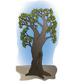 branchy tree with hollow trunk vector image vector image