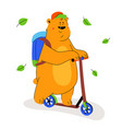 cute brown bear on a scooter - flat design style vector image