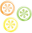 lime lemon isolated on white background vector image vector image