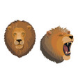 lion animal head angry roaring leo face vector image