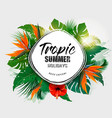 summer holiday background with tropical plants vector image vector image