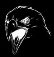 a eagle head mascot in the black vector image vector image