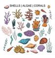 algae coral and shells big set vector image vector image