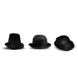 black hats vector image
