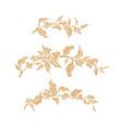 floral set nature frame vector image vector image