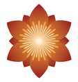 Flower head vector image vector image