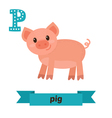 Pig P letter Cute children animal alphabet in vector image vector image