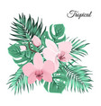 pink orchid bouquet with green tropical leaves vector image vector image