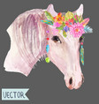 watercolor horse head over white vector image vector image