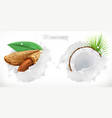 almond coconut and milk splash 3d realistic vector image