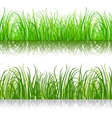 Green background grass vector image