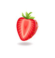 realistic sweet half cut strawberry with green vector image