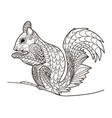 squirrel in a line coloring book pattern vector image