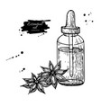 anise star essential oil bottle and heap of spices vector image