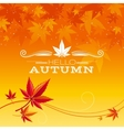 Autumn background with red orange maple leafs vector image