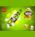 beer ads bottle with ice cubes on green vector image vector image