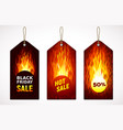 black friday hot sale on price tag set of three vector image
