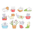 cute kitty funny cats in cups sleeping playing vector image vector image