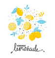 homemade lemonade hand drawn typography summer vector image