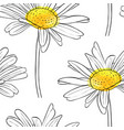 seamless pattern with flower of daisy vector image vector image