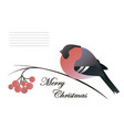 the christmas composition of a bullfinch rowan vector image