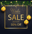 winter sale collection with fir branches and balls vector image