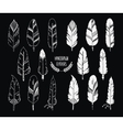 Hand drawn set of feathers and silhouette isolated vector image