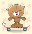 cute bear with skateboard vector image vector image