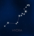 Hydra constellation in night sky vector image vector image