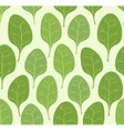 Spinach leaves seamless pattern background Veggie vector image