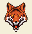 angry fox head vector image