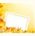 autumn maple leaves background with banner vector image vector image