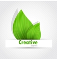 Background with two leaves vector image vector image