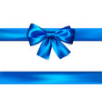 blue bow with ribbon isolated on white background vector image