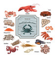 colorful hand drawn seafood icons set vector image vector image