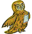 drawn owl with book vector image