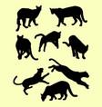 puma animals silhouettes vector image vector image