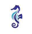 sea horse creative vector image vector image