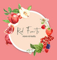 wreath design with fruits theme various fruits vector image vector image